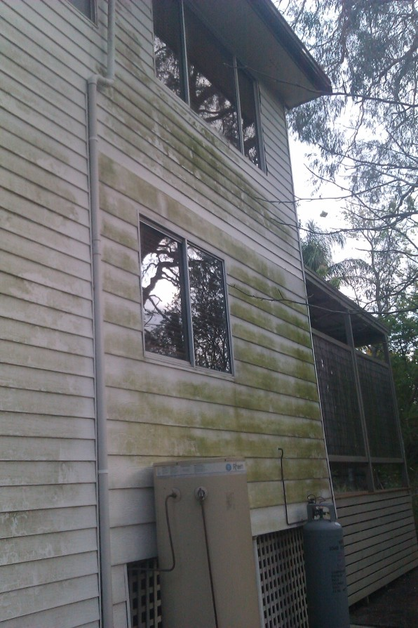 Before Exterior House Washing Part 93